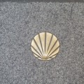 compostela shell larger