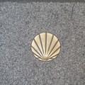 compostela shell larger
